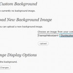 How To Use Custom Background Support WordPress 3.0