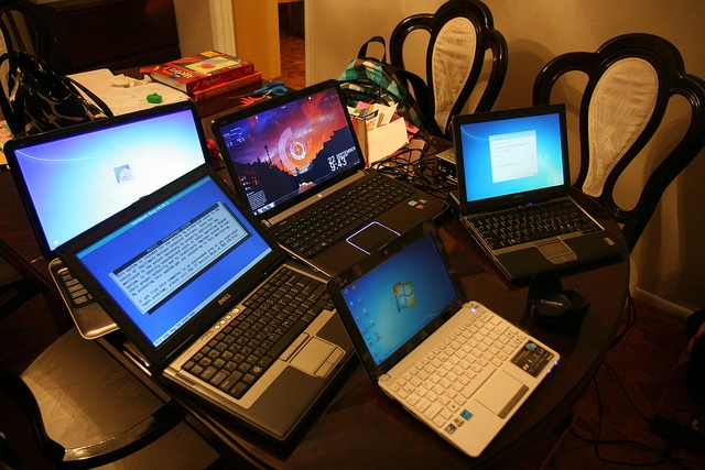 What laptop suits you?