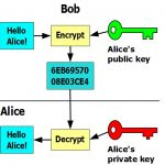 The Professional's Guide to PGP Encryption