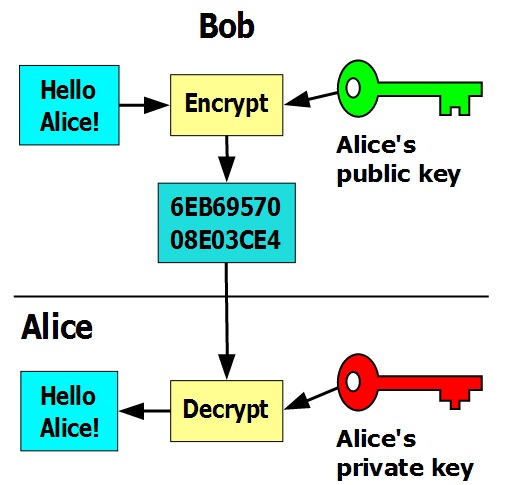 Professional's Guide to PGP Encryption